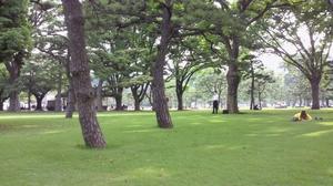 皇居の芝生