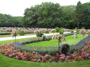 カトリーヌ・ド・メディシスの庭園